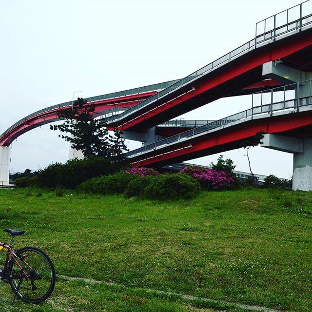 面白い形の橋だ!#中の島大橋  #木更津 from Instagram